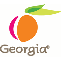 Team Georgia Jobs